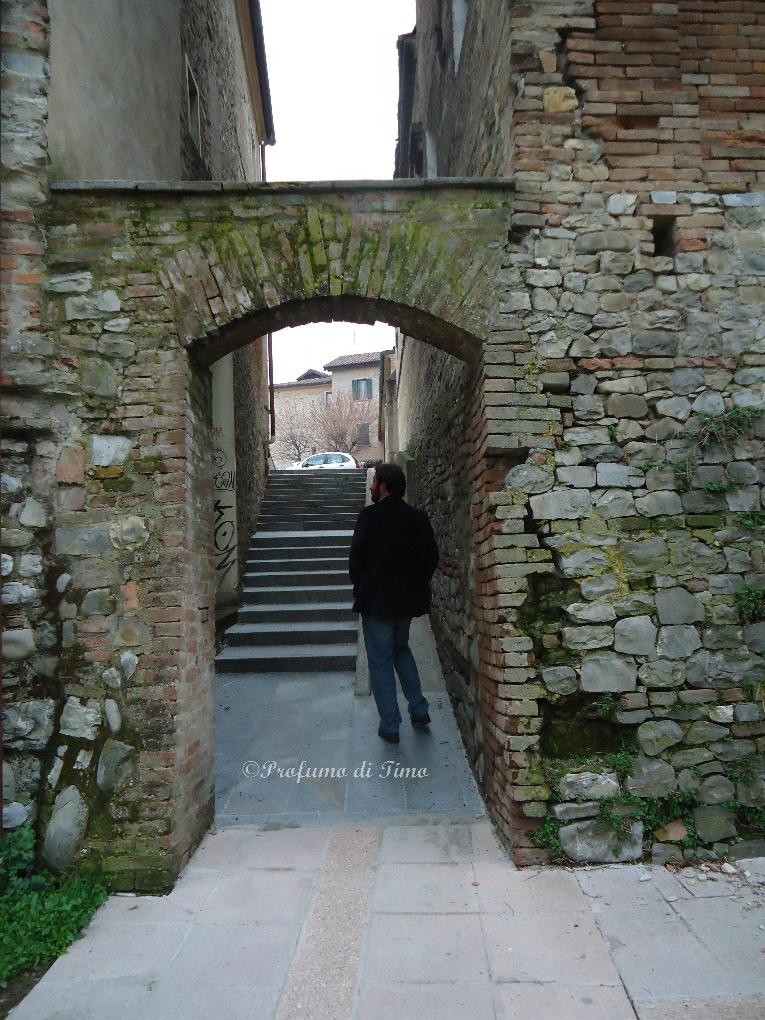 Arceto Castello (1)