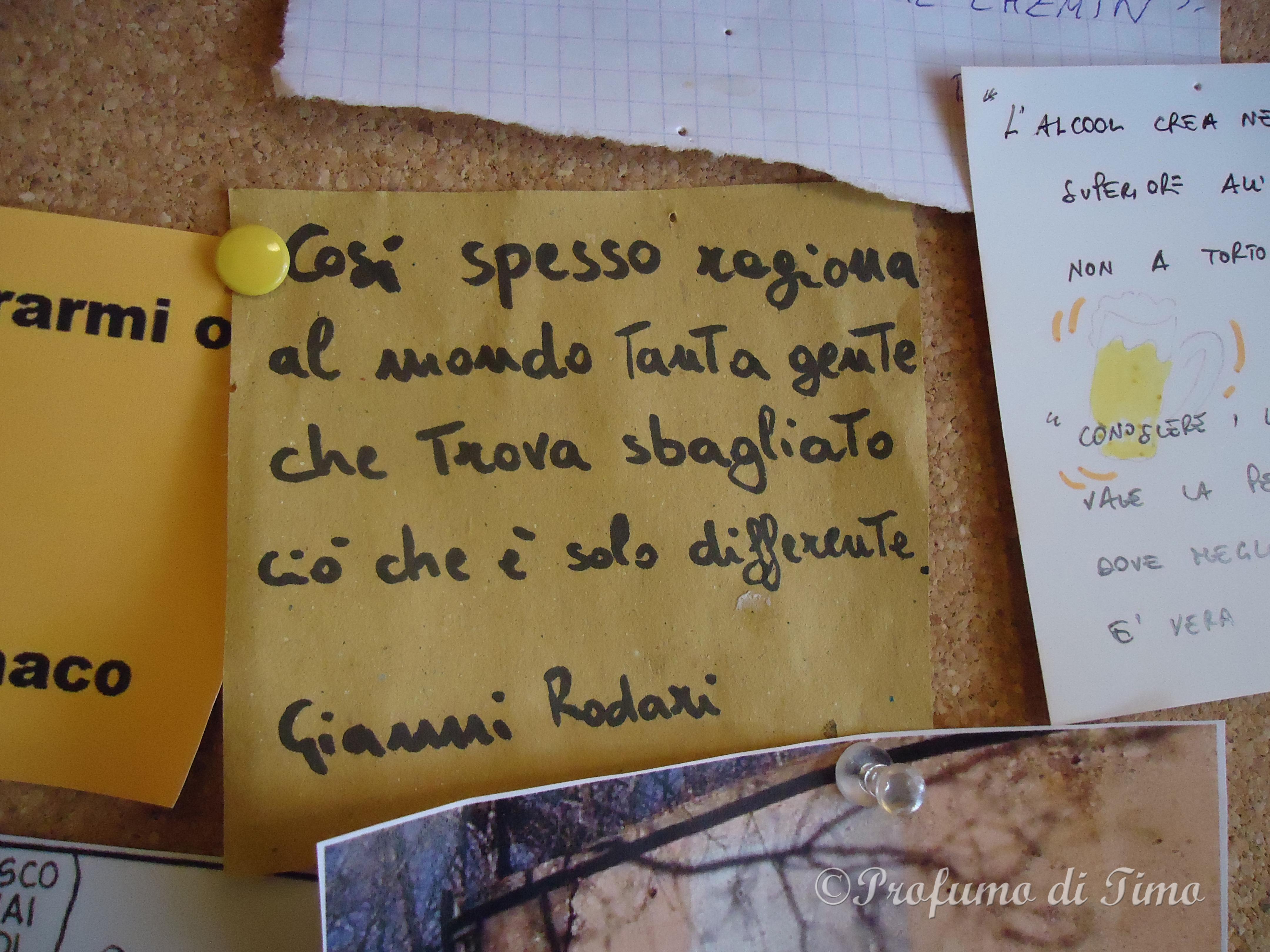 pranzo a Modena Gusto Giusto  (1)
