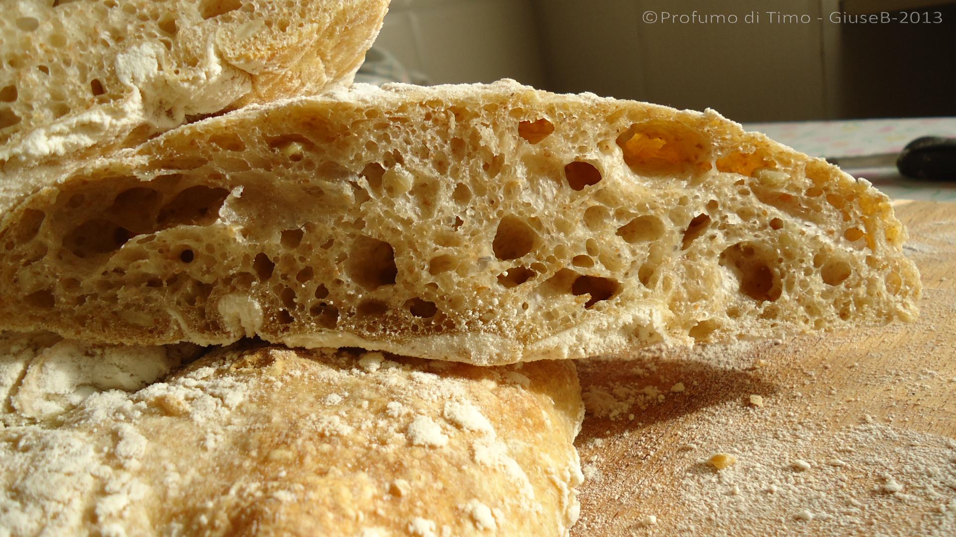 pane integrale alveolatissimo (40)