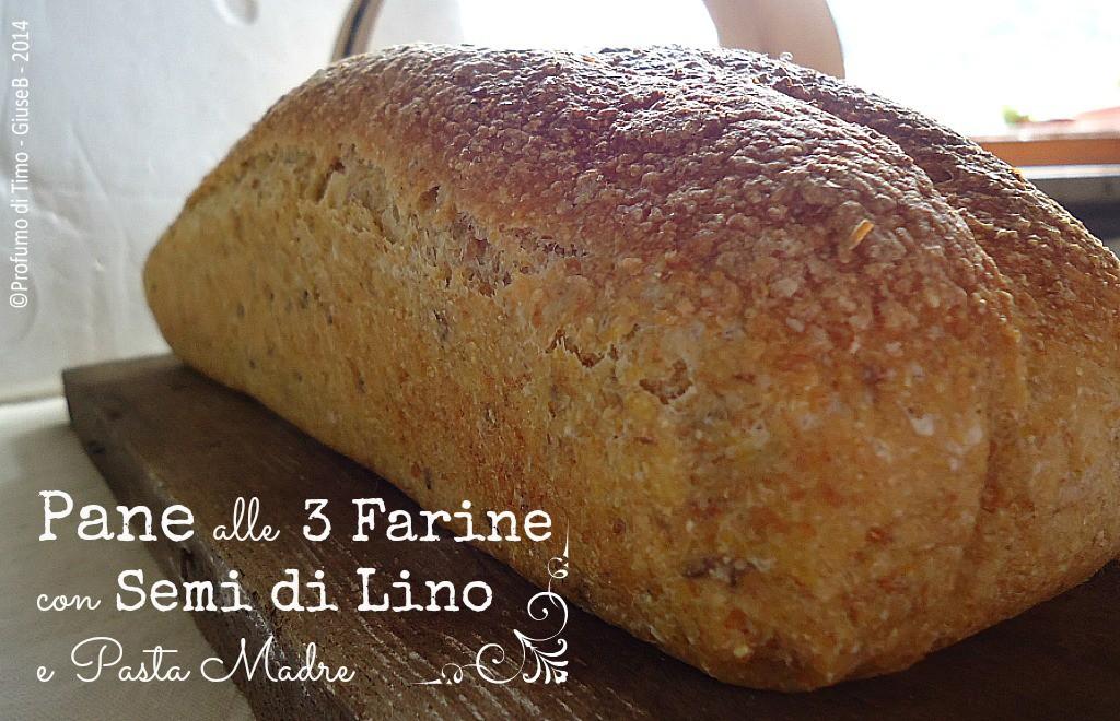 Pane con semi di lino alle tre farine e Pasta Madre