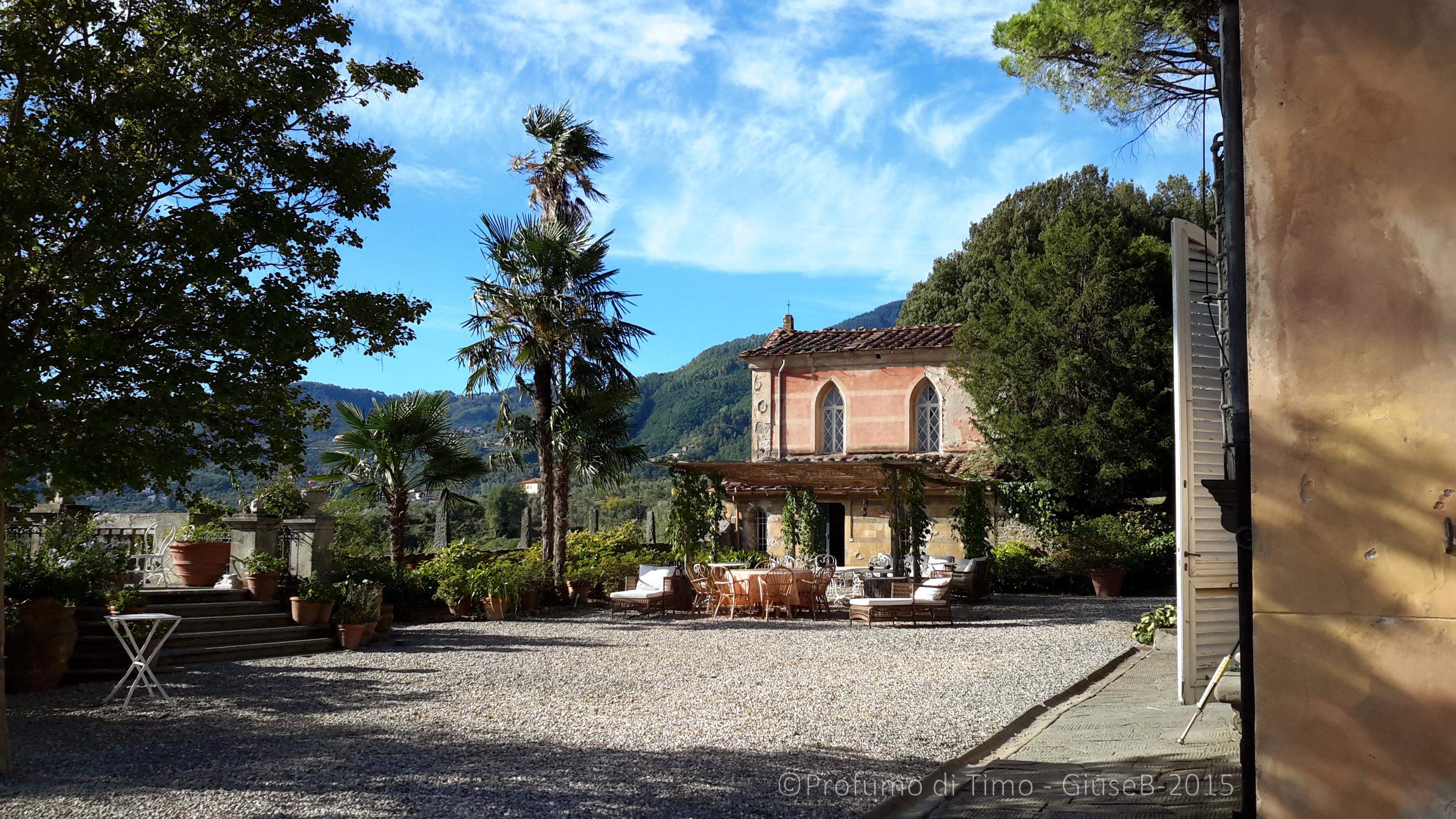 Vendemmia 2015 a Valgiano la Villa giardino