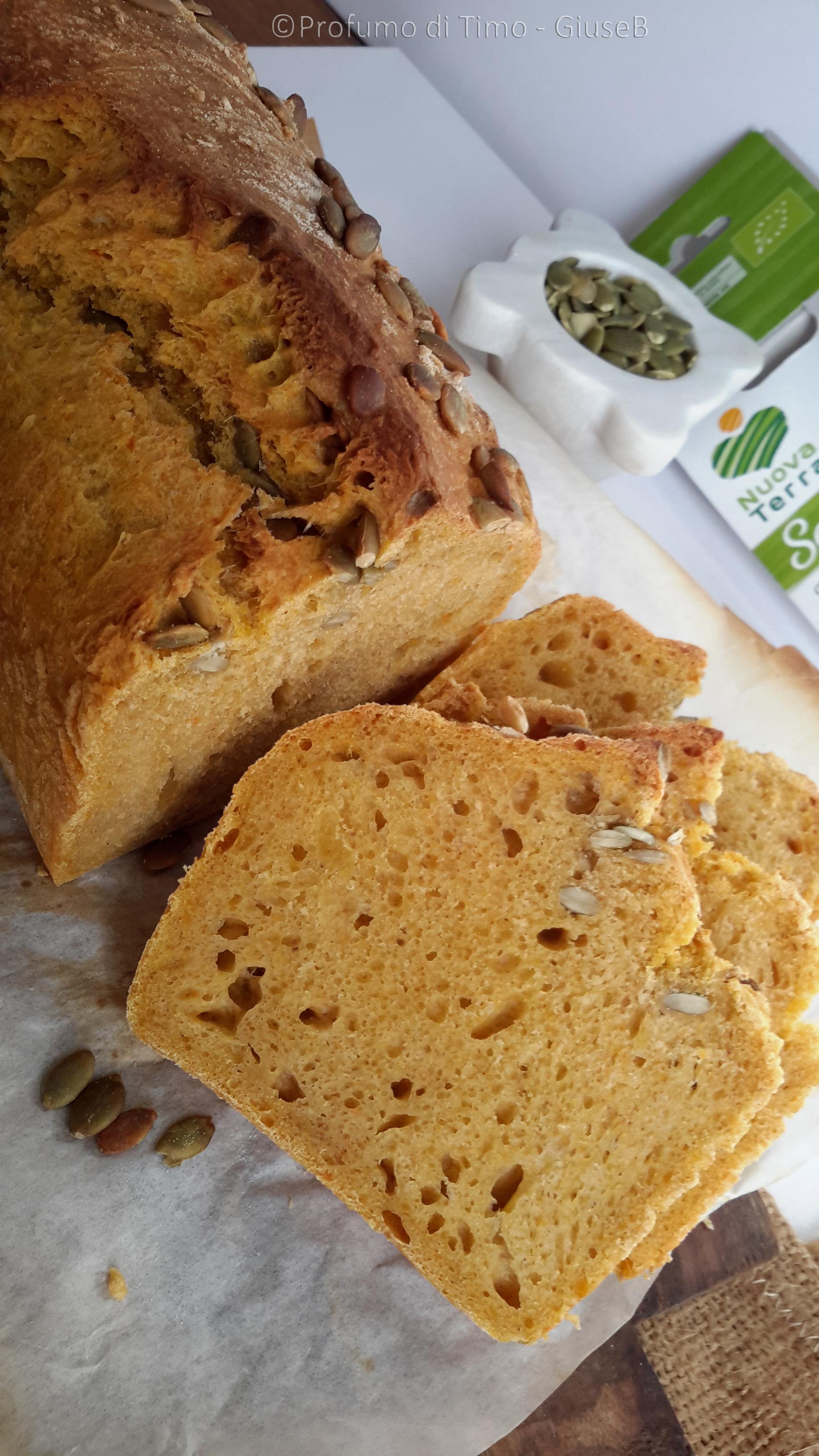 pane di zucca con semi nuova terra (39)