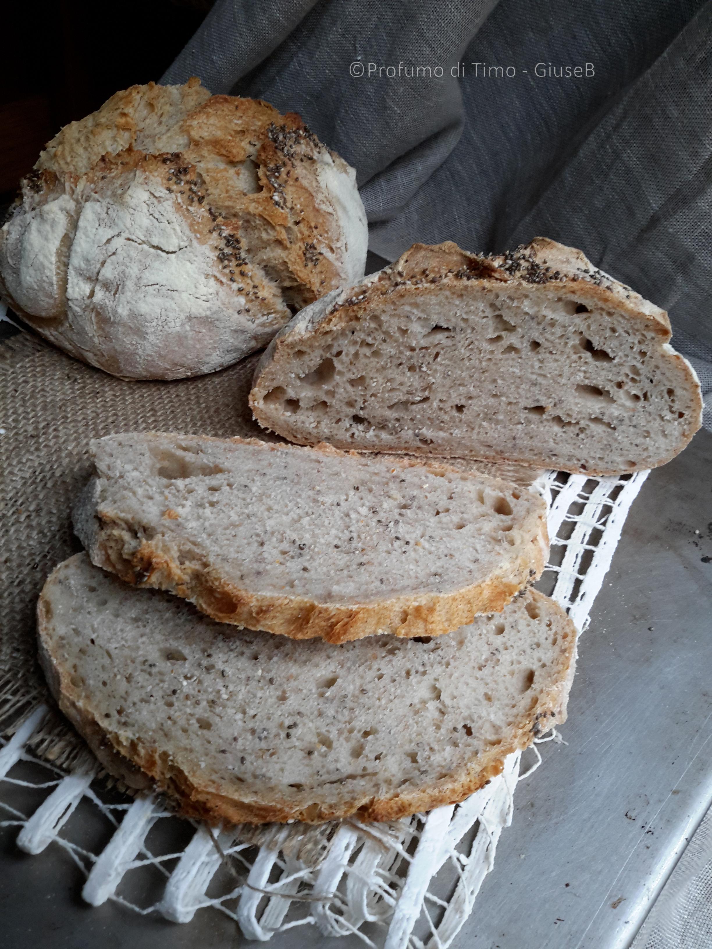 pane con semi di chia4