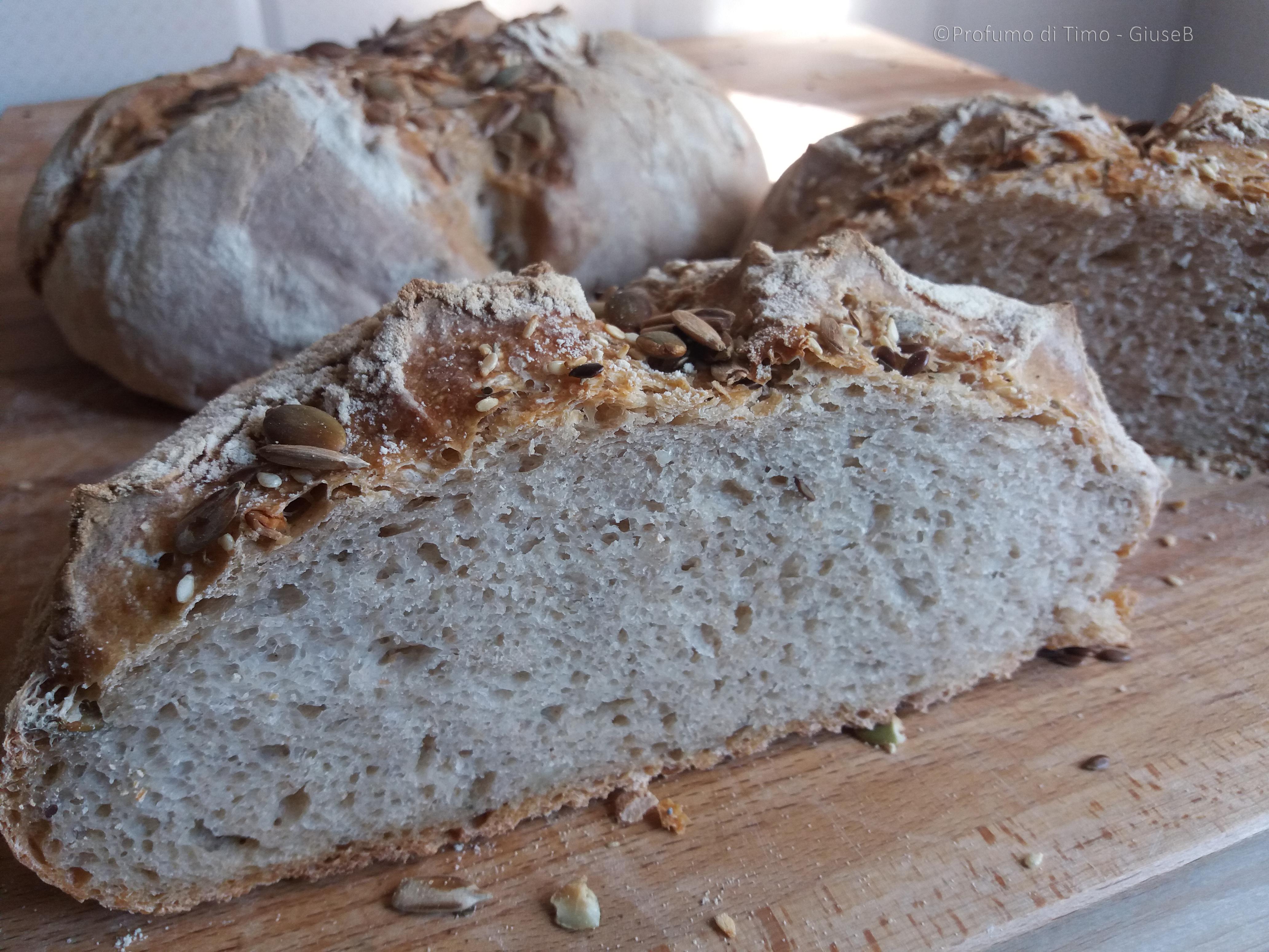 pane-semiintegrale-con-mix-mediterraneo-bio-nuovaterra