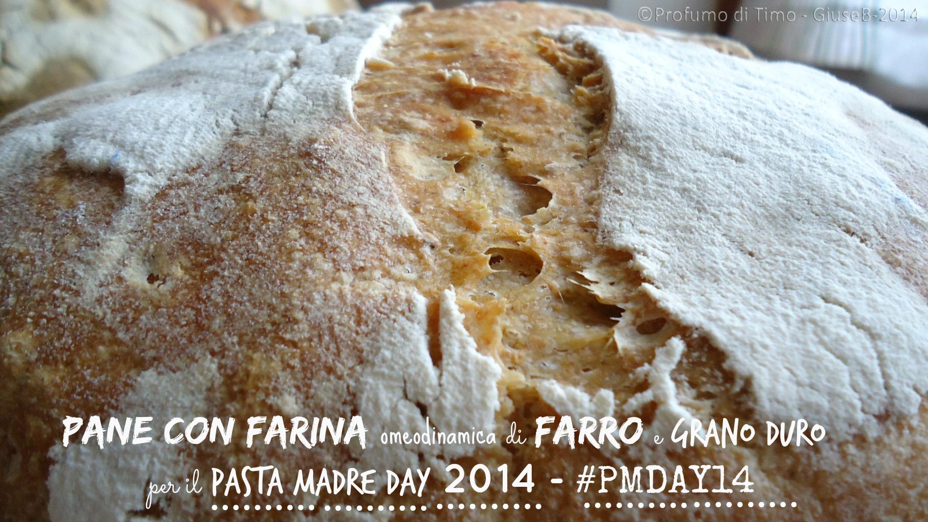 Pane con Farina omeodinamica di Farro e Grano Duro per il #PMDAY14