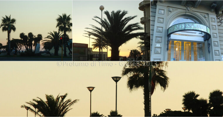 ESPLANADE Hotel Residence a Viareggio e la Serata Emiliana