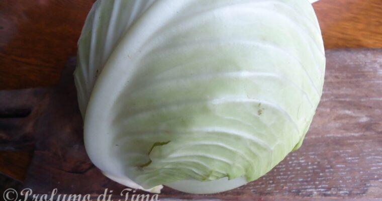 Cavolo cappuccio bio in insalata