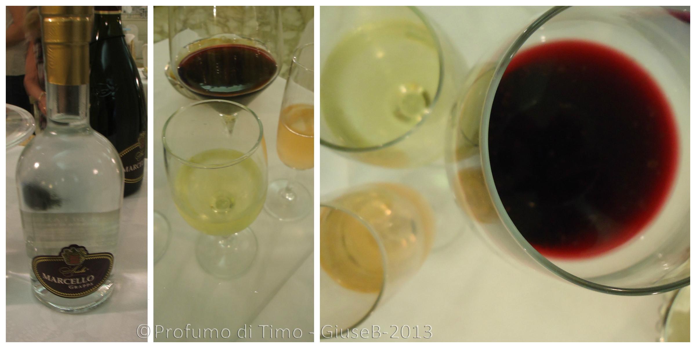 Ariola Vigne & Vini Langhirano Collage1