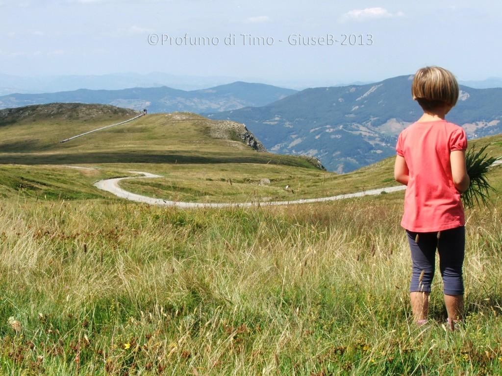 la principessa ammira il paesaggio