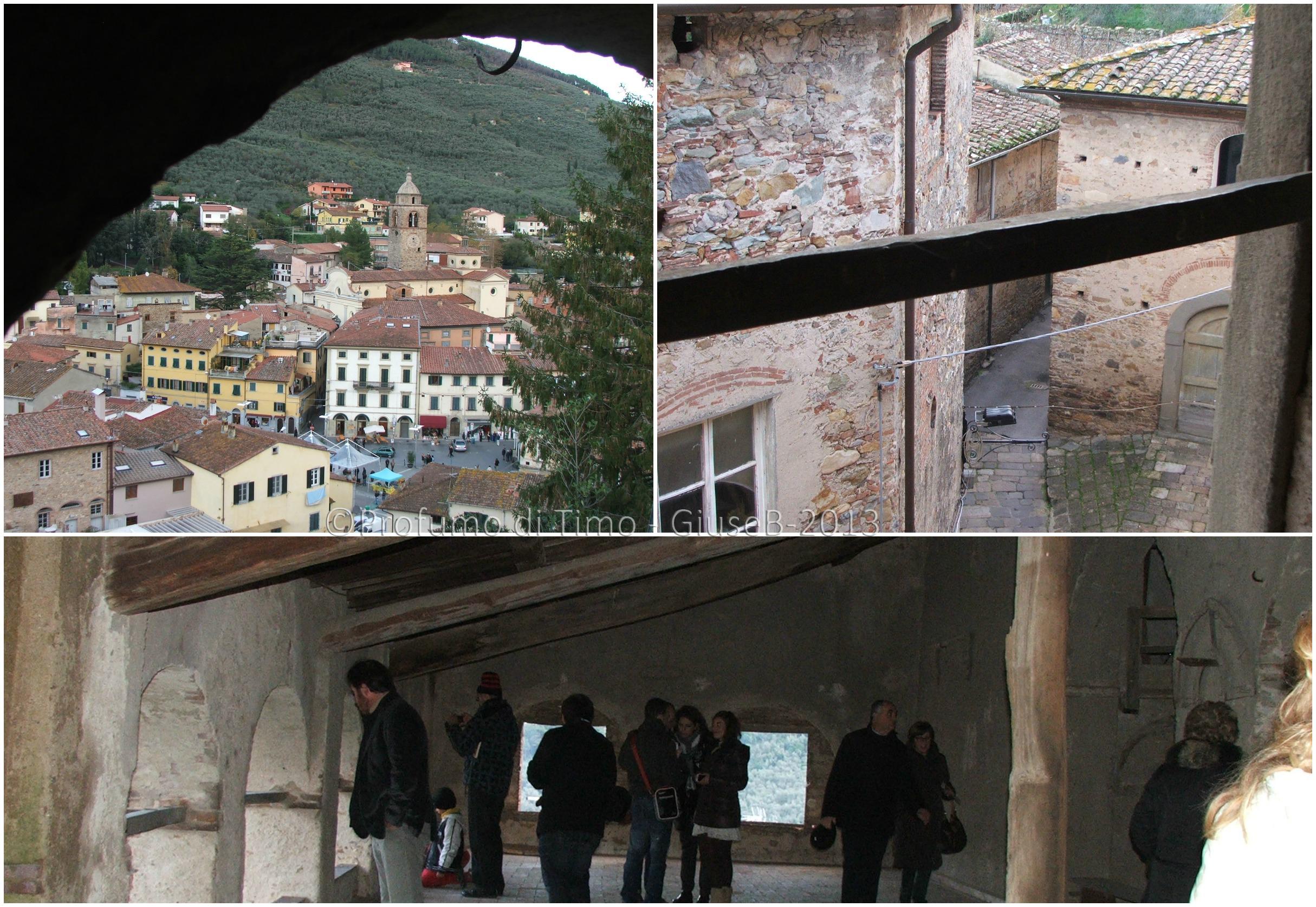 Villa Medicea (52)