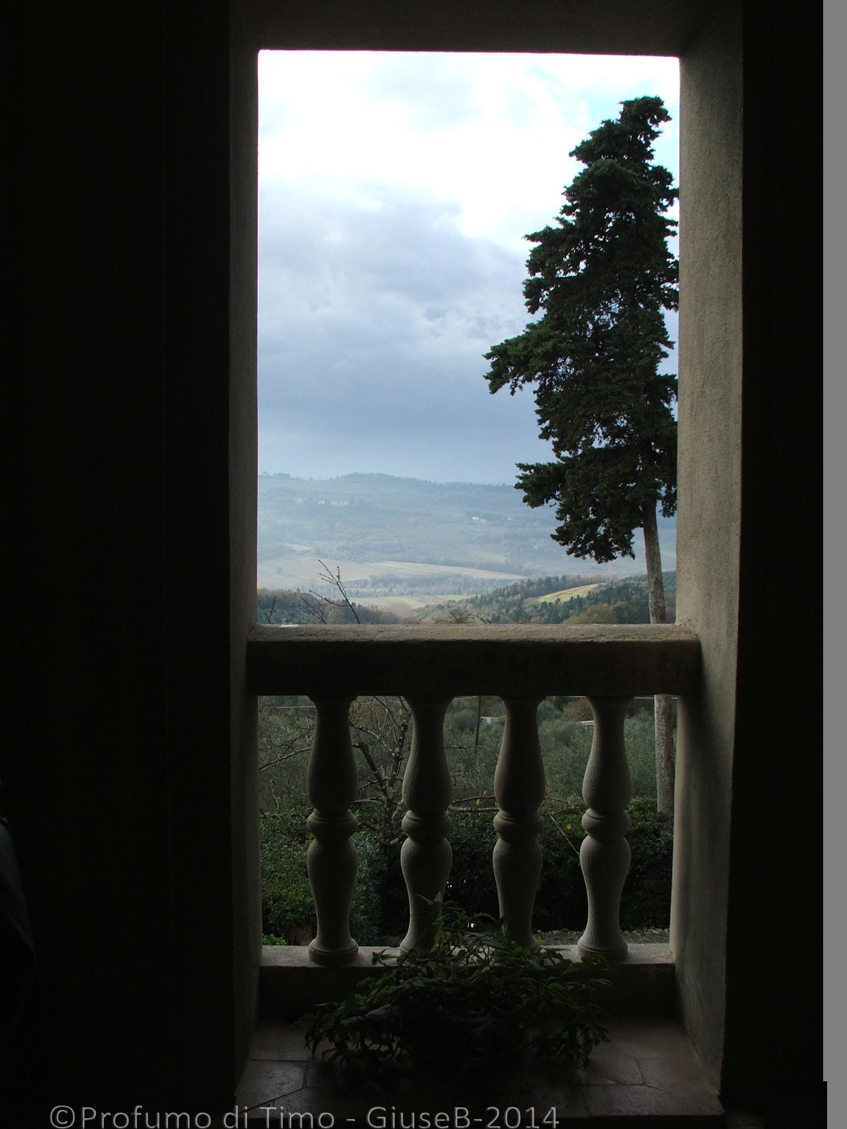 panorama dal Villa Il Poggiale