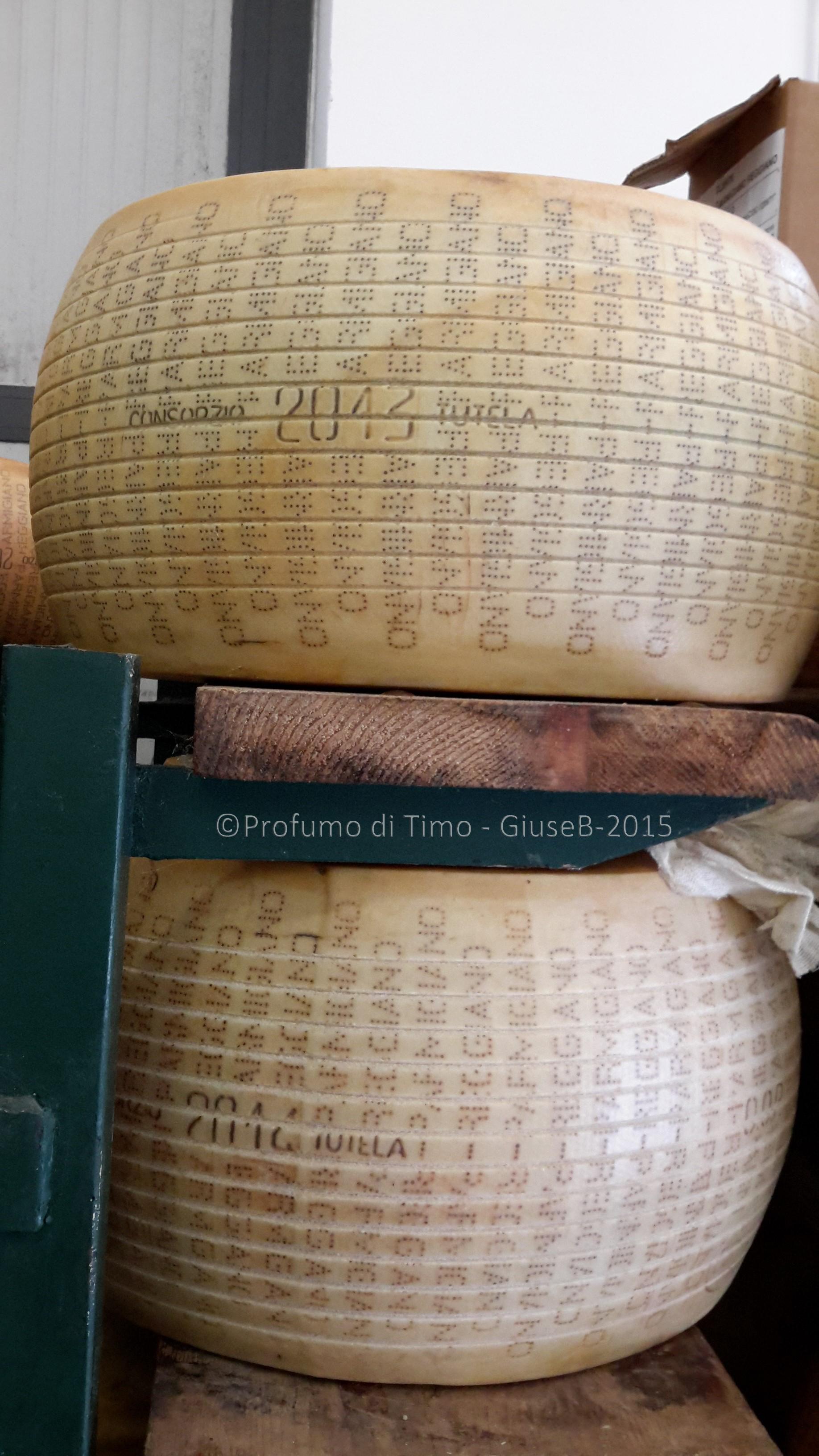 Parmigiano Reggiano Caseificio Sociale Coduro Mezzano di 2@ categoria